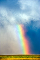 Vibrant Rainbow Over Farmland, 2011