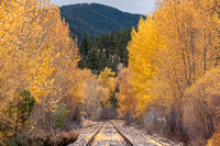 Railroad Tracks, Wolf Creek, Montana