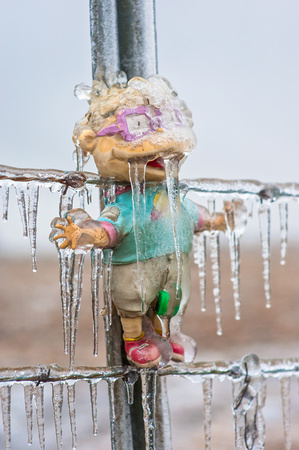 Doll Frozen on Fence