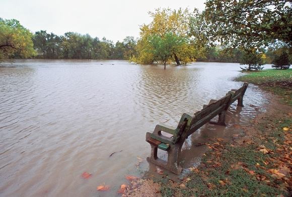 Park Bench in Flooded Park