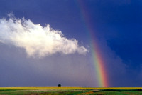 Rainbow and Cloud Over Rural Landscape