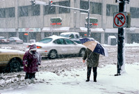 City Pedestrians in Heavy Snowfall